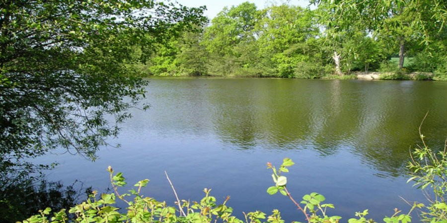 Terry's Pool at Earlswood Lakes