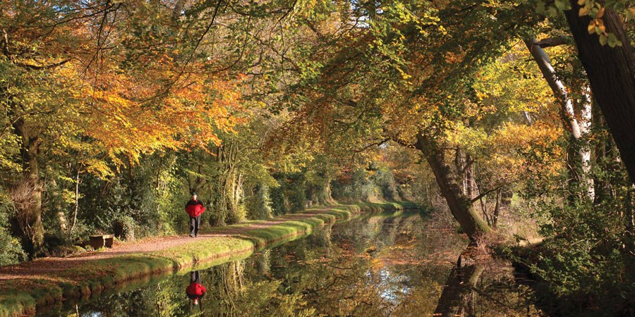 Man walking along towpath by canal with autumnal colours