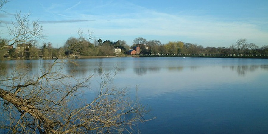 Engine pool at Earlswood Lakes