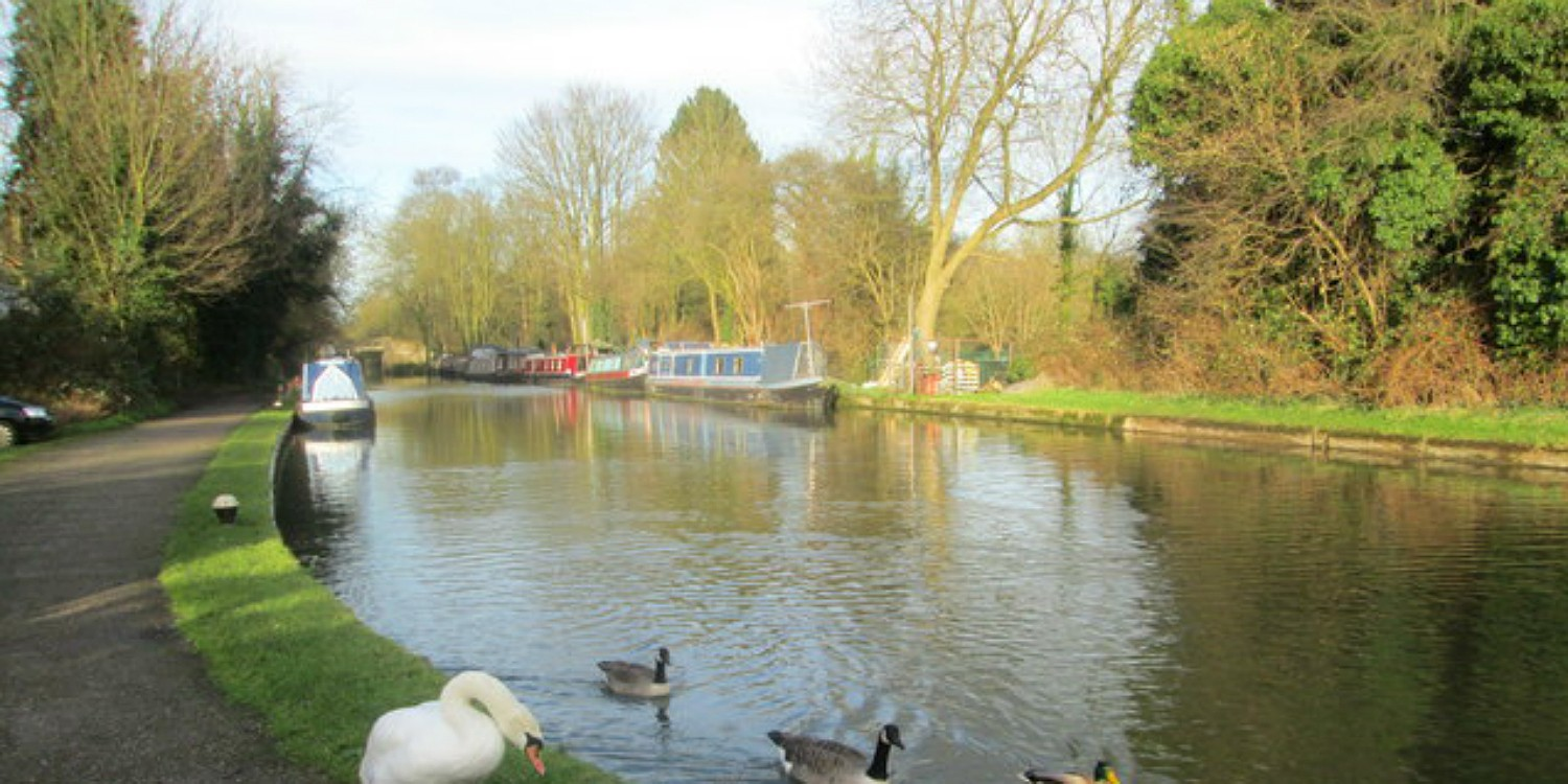 View across Cassionbury Park by the canal