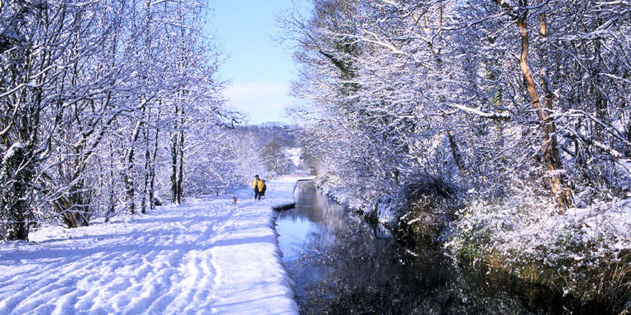 Walking along the canal in winter