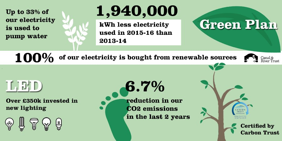Green Plan infographic