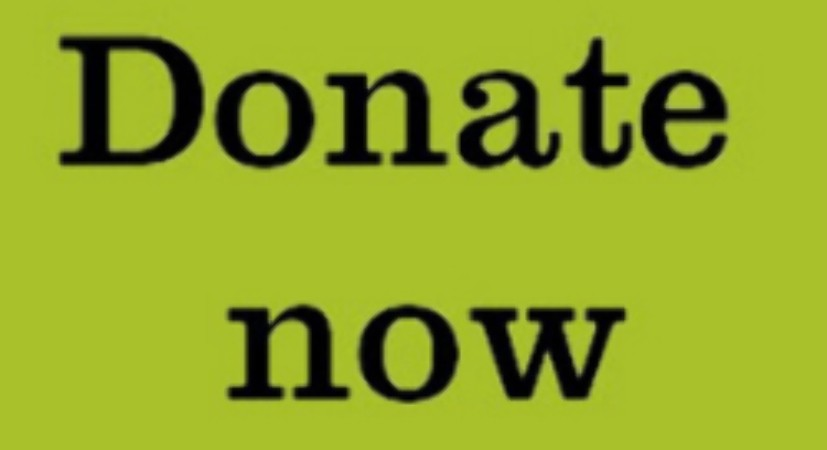donate now box