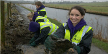 Volunteer dry stone walling by waterway