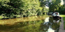 Cannock Chase, Trent & Mersey Canal