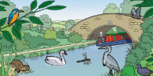 Canal and river habitats topic pack