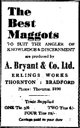 Historic maggot advert