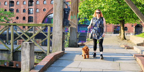 Walking a dog by the canal
