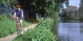Cyclist on towpath of Hertford Union Canal