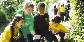 Explorer education volunteer and pupils looking at insects in tub on towpath