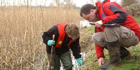 Ecologists checking the canal bank