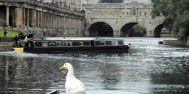 Canal in Bath with narrowboat turning and white duck in foreground