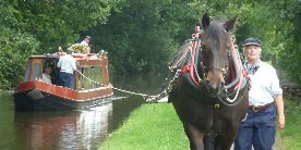 Horse boating on the Rochdale Canal