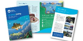 Let's Fish! free guide
