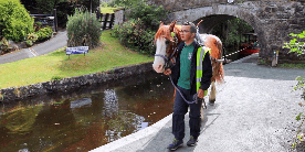 Ifan & Taffy on the llangollen Canal