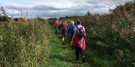 6 mile guided walk on the Pocklington Canal