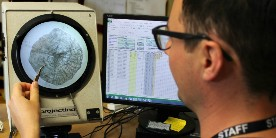 Fisheries scientist examining fish scales