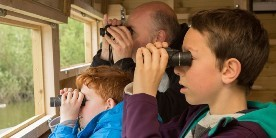 Dad and two sons bird watching