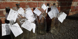 Old bottles discovered in the remains of the canal (Photo: Iona Gibson)