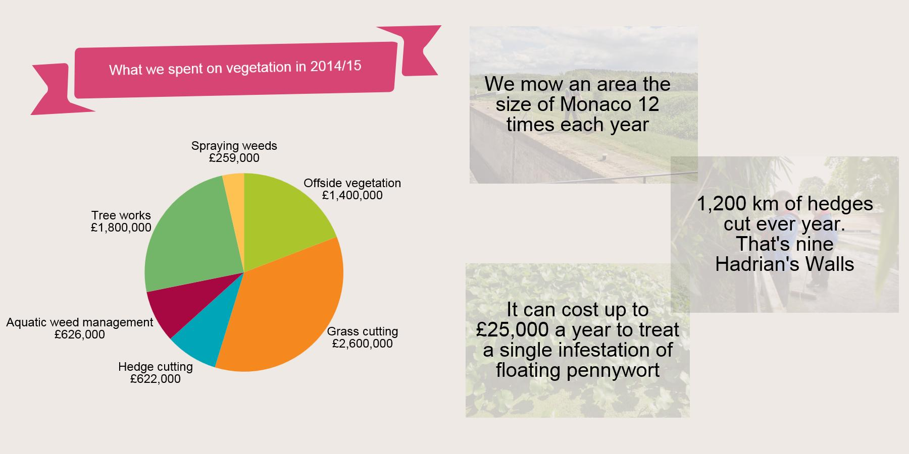 An infographic showing what we've spent on vegetation in 2014/15
