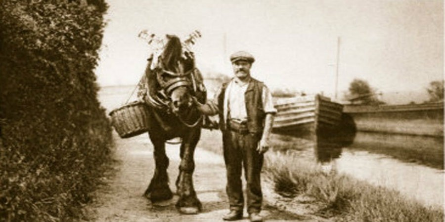 Black and white photo of a canal horse with handler