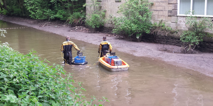 Rescuing fish on the Macclesfield Canal