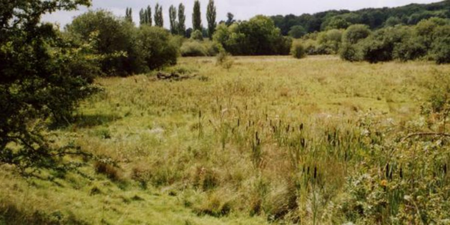 THings to do in Stoke Bruerne - brick pits