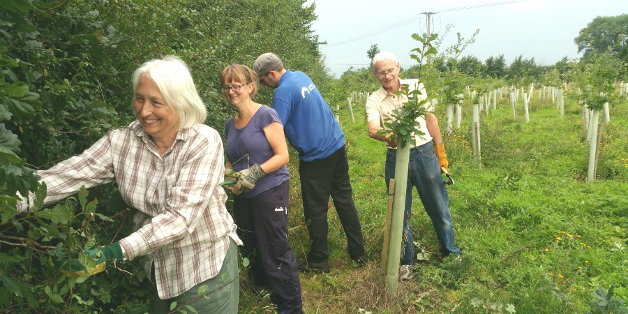 Jubilee Wood volunteers courtesy Chris Edwards