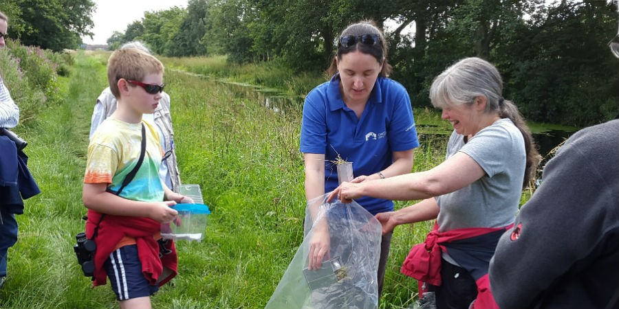 Mammal trapping event