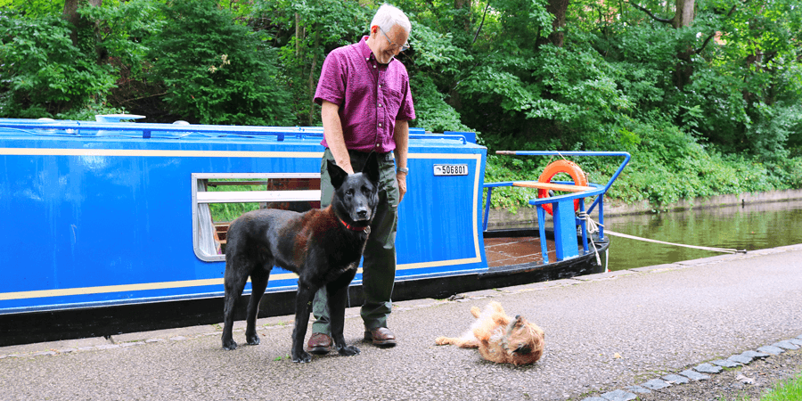 Geoff, Phantom & Bebba, dogs on the waterways