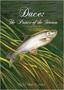 Dace: Prince of the stream