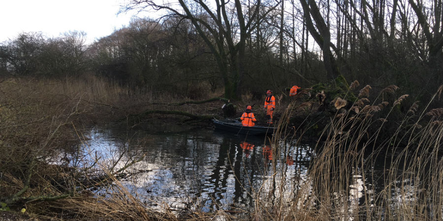 Tree work taking place along the Pocklington Canal