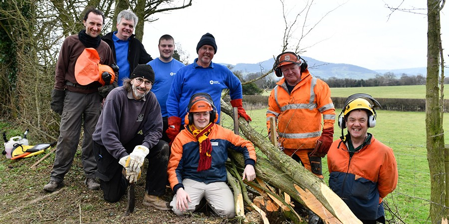 Hedge-laying training group