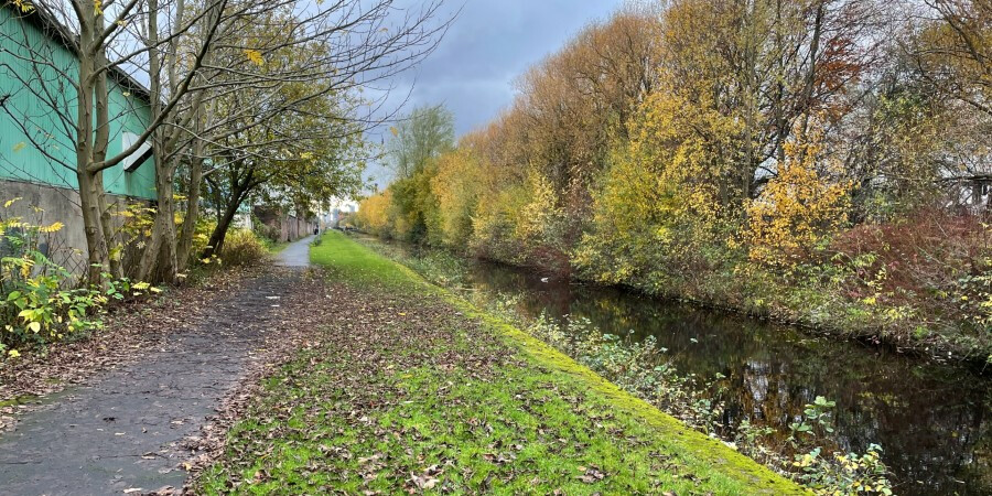 Autumn leaves on the towpath