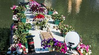 Most flower filled boat shortlist - Imojean