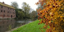 Autumn on the Pocklington Canal
