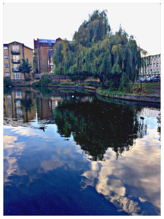 Reflection, Regents Canal Hackney by Alan Shearman
